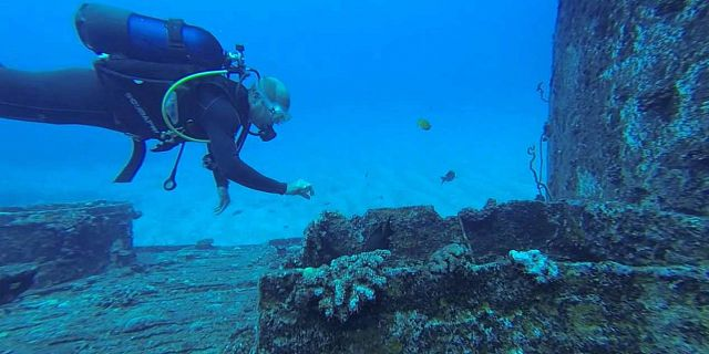 Diving in grand bay mauritius Forfaits de plongee maurice (8)