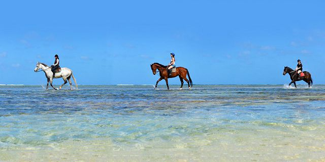 secluded horse riding on the riambel beach (2)