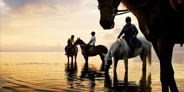 romantic sunset horse riding on the riambel beach (1)
