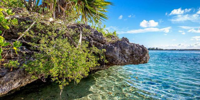 Aigrettes island mauritius south east