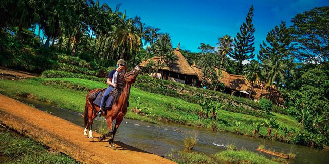Horse riding excursion (7)