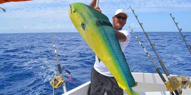 Big game fishing grand bay mauritius (6)