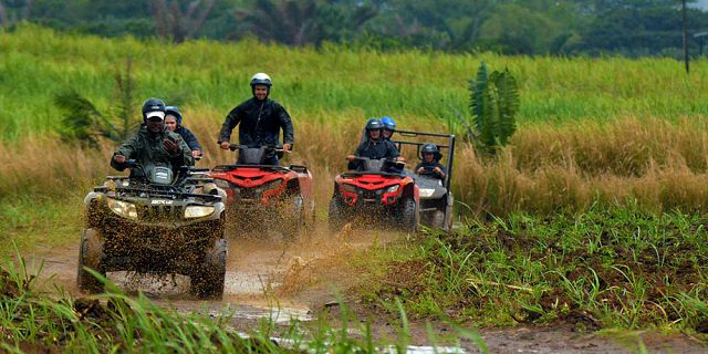 Horse riding excursion and quad biking (5)