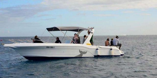 promenade bateau ile maurice
