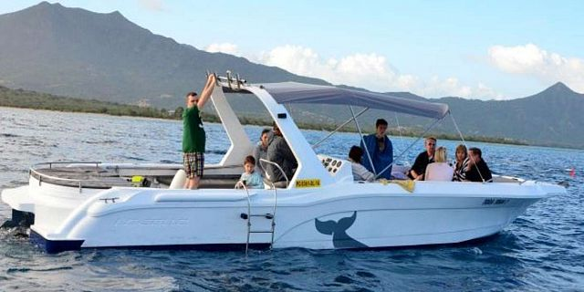 Whales watching trip mauritius (1)