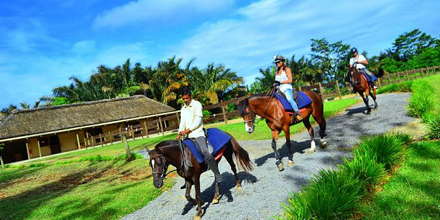Horse riding excursion and quad biking (12)