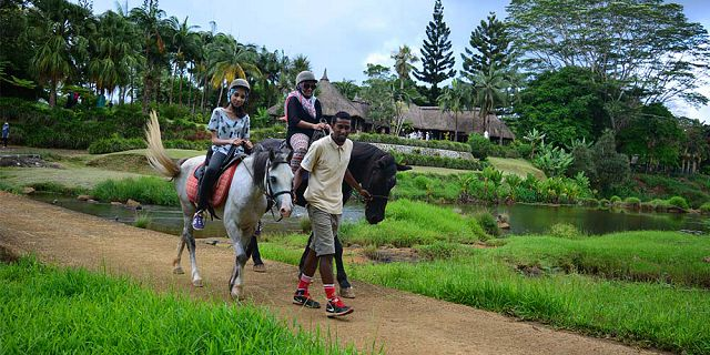Horse riding excursion and quad biking (8)